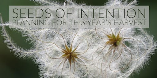 Mindfulness Day Retreat - sowing seeds of intention for 2020
