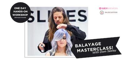 Balayage Masterclass with *** Seeley