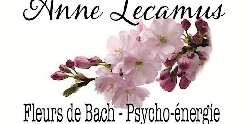 Café-Fleurs de Bach