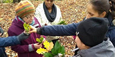 Level 3 Forest School Training Manchester October Half Term 2020 (7 days training)