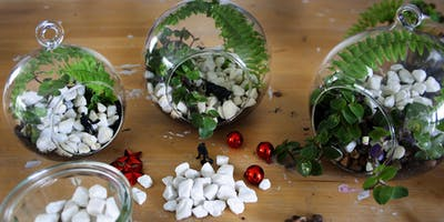 Make a Miniature Terrarium with plants, ferns and mini objects