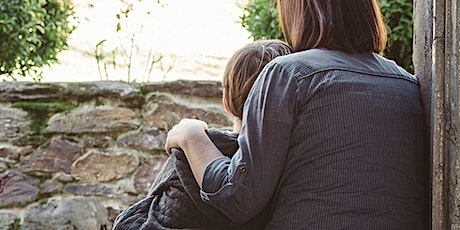 Guided Parent-Led CBT for child anxiety problems:Train the Trainer Workshop tickets