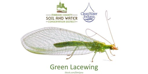 Growing Food with Beneficial Insects and Pollinators