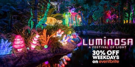 Luminosa: A Festival of Light (Weekday Tickets) tickets