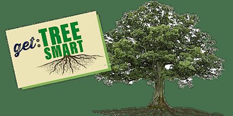 Tree Smart Workshop January tickets