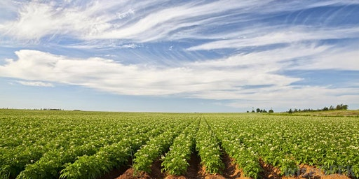 Core Pesticide Training - COMMERCIAL