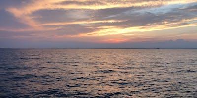 BOFFO Fire Island 2020 Rentals