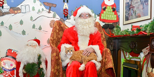Santa Paws - Bring your cat or dog to see Santa!