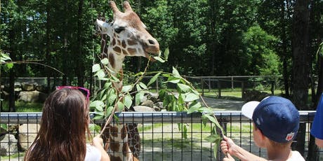 Wild Adventure Program: Animals, Habitats & Ecosystems tickets