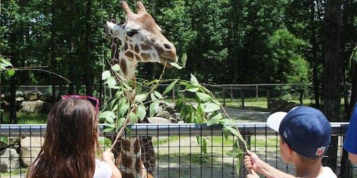 Wild Adventure Program: Animals, Habitats & Ecosystems