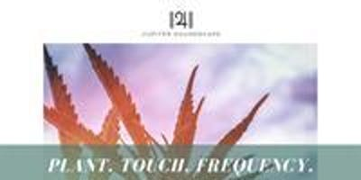 PLANT + TOUCH + FREQUENCY with Joy Reyes