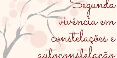Segunda vivência em constelações e autoconstelações