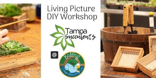 DIY Succulent Workshop at Bullfrog Creek Brewery
