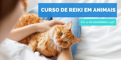 Curso de Reiki em Animais