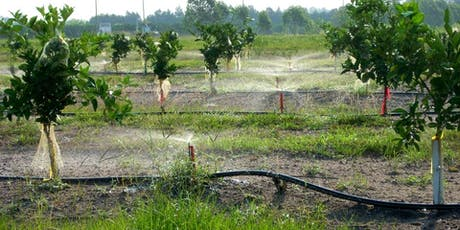 In-Service Training: Citrus Irrigation and Nutrient Management tickets