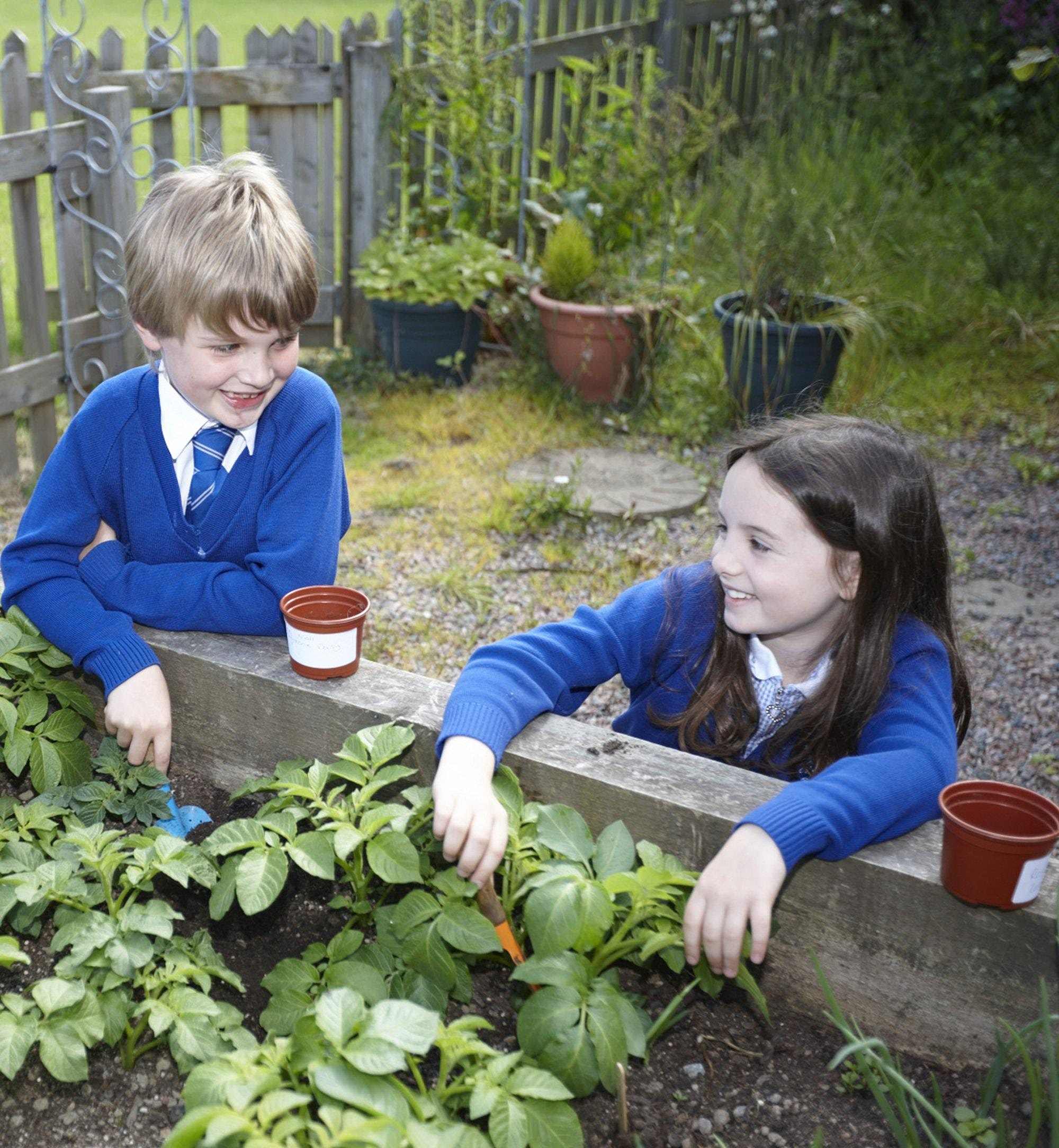 School Incursion - Sustainability Topics