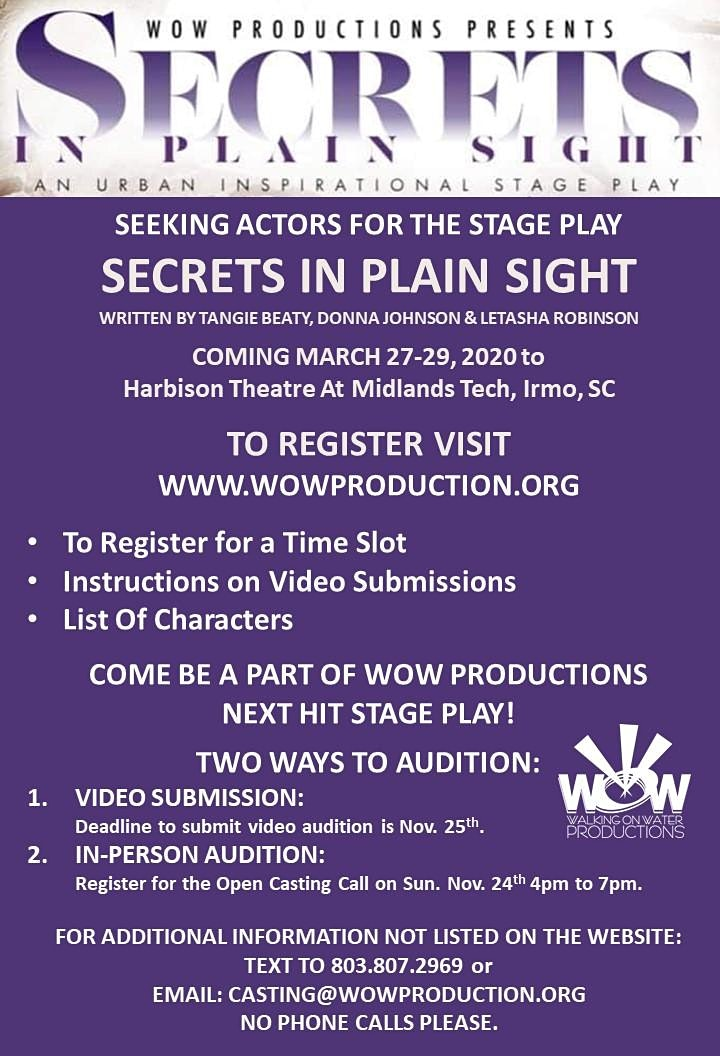 STAGE PLAY AUDITIONS - SECRETS IN THE PLAIN SIGHT image