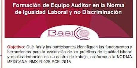 Formación de equipo auditor en la norma de Igualdad Laboral y no Discrimina entradas