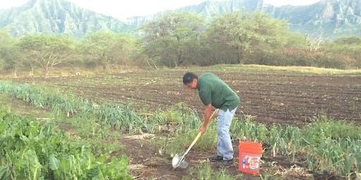 Soil Health Workshop: mandarin