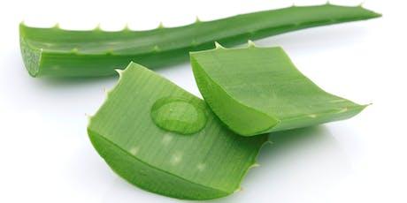 Enhance Your Health With Aloe Vera tickets