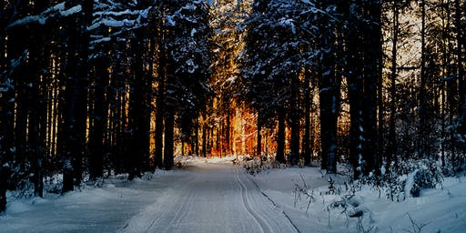 Rebirth of Our Inner Light ~ Celebrating Winter Solstice