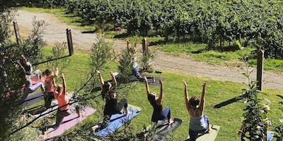 Roaming Zen presents You, Yoga & Wine @Anderson Hill