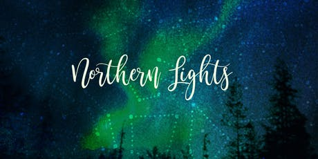 ★ Art Night ★Wintry Northern Lights Canvas ★ Adult Painting Workshop by Artreach Studios tickets