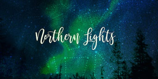 ★ Art Night ★Wintry Northern Lights Canvas ★ Adult Painting Workshop by Artreach Studios