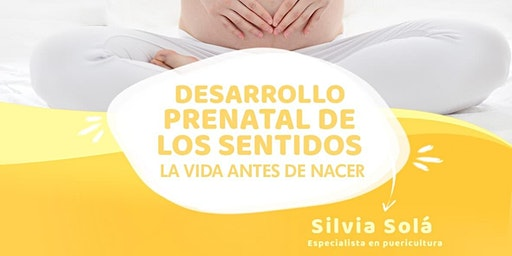 Encuentros - Desarrollo Prenatal de los Sentidos - La vida antes de nacer