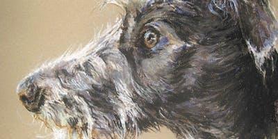 Animal Portrait for Beginners