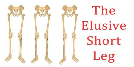 Short Leg Workshop - Which Type of Short Leg Do You Have?