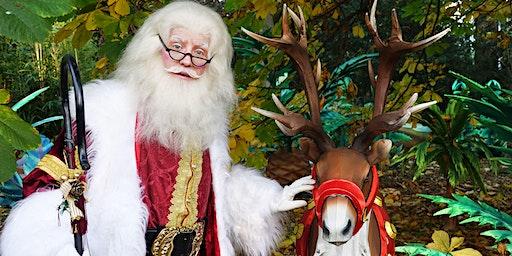 Breakfast with Santa at RZSS Edinburgh Zoo