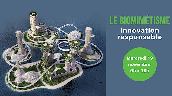Image pour Le Biomimétisme : Innovation Responsable