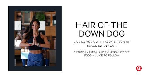 Hair of the Down Dog - Live DJ Yoga