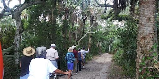 Marineland River-to-Sea Preserve Trail Walk