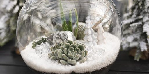 Make Your Own Winter Snow Globe Terrarium  Class (For Kids)