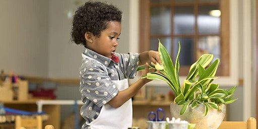 """BLACKS, BELIEVERS & THE MONTESSORI WAY: """"Trauma Informed Education (ACEs 101) & the Role of Resiliency"""""""