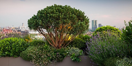 Emily Erlam | A Sense of Place: Designing Gardens with Impact tickets