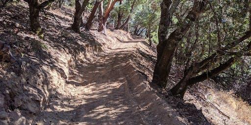 Ponti Ridge Trail Day