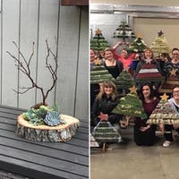 DIY Holiday Workshop: Succulent Centerpiece and Rustic Christmas Tree