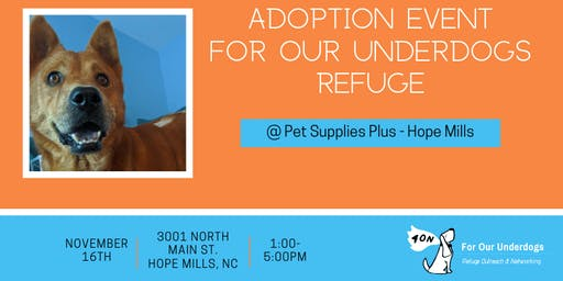 Pet Supplies Plus Adoption Event