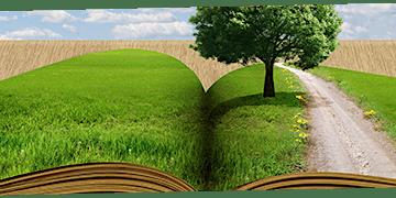 Laboratori di orientamento dell'indirizzo professionale Agricoltura, sviluppo rurale