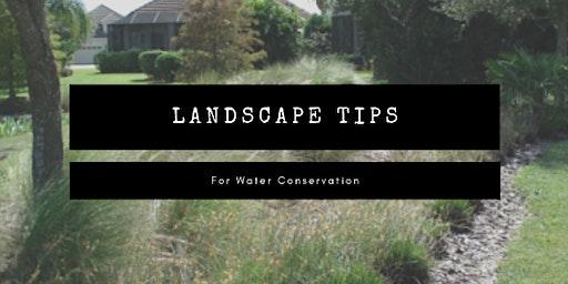 Landscape Tips for Water Conservation