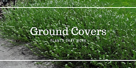 Ground Covers - Plants That Work tickets
