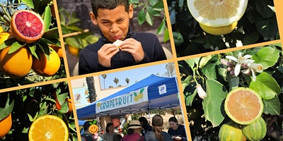 California Citrus State Historic Park's Annual Citrus Tasting and Family Festival