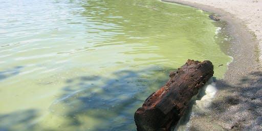 Réunions publiques sur la qualité de l'eau du lac Champlain, de la baie Missisquoi et de la rivière Richelieu