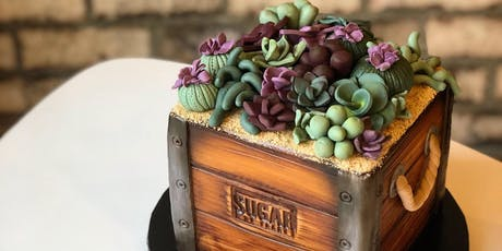 Succulent Planter Cake Class - December 8 tickets