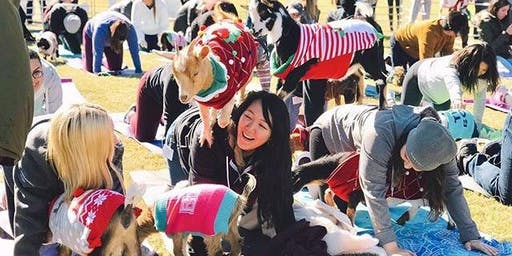 Holiday Goat Yoga TROPHY CLUB, TX! Coffee, Cocoa & Candy Canes!