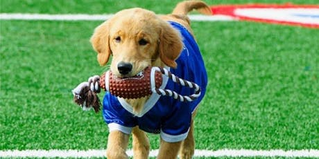 ZogSports SuPAW Bowl: A Day for the Dogs tickets