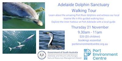 Adelaide Dolphin Sanctuary Walking Tour